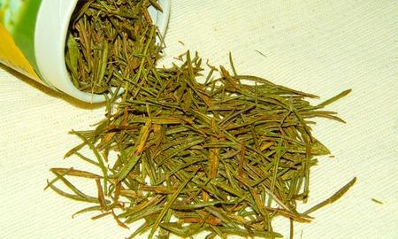 palustre: the dried labrador tea close up