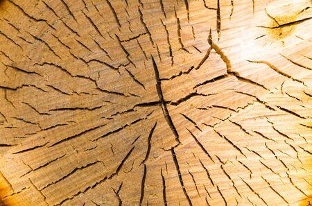 sawn: core sawn wood of birch