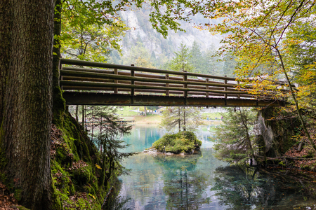 wood bridge over the green water lake and tropical forest