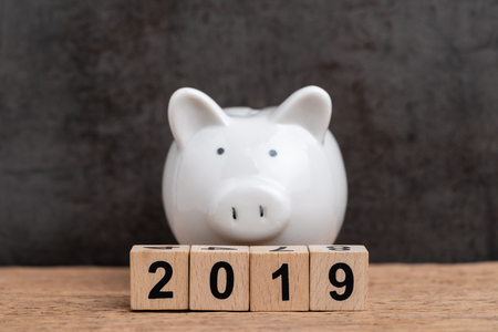 2019, year of pig financial target, budget, investment or business goals concept, cube wooden block building year number 2019 with white piggy bank on white background.