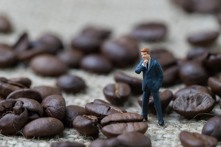 Coffee business expert or professional concept, miniature people businessman standing and thinking with roasted coffee beans on gunny bag background, selecting best aroma quality.