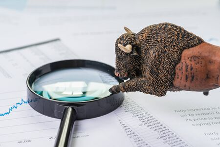 Investment bull stock market concept, bull figure on magnifying glass on chart and graph, price list report paper.