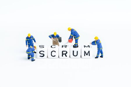 Miniature people team members building the cube block with alphabets combine the word Scrum on white copy space using as scrum master in agile methodology for software development concept. Stock Photo