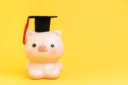 Education fund, scholarship or savings for study university and college concept, cute pink piggy bank wearing graduation cap on yellow background with copy space.
