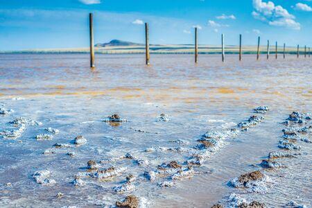 Crystals of natural salt in the lifeless hot terrain on the salt lake Baskunchak. Russia. Astrakhan region.
