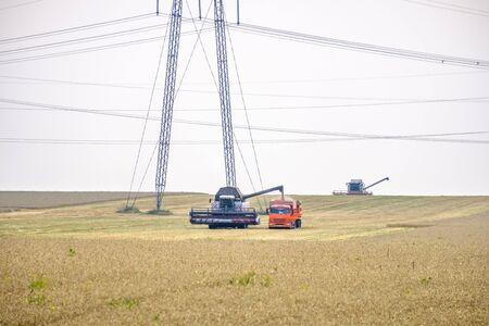 Une moissonneuse-batteuse agricole décharge du blé dans un camion dans un champ d'été.