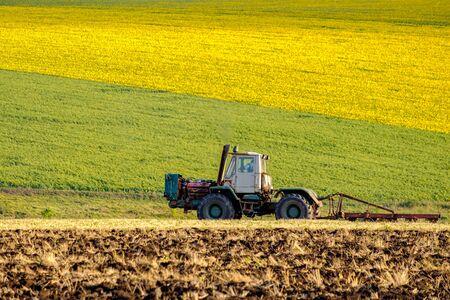 Un trattore agricolo al sole della sera ara il campo con un aratro dopo aver raccolto il grano. Sullo sfondo ci sono campi di girasoli gialli brillanti.