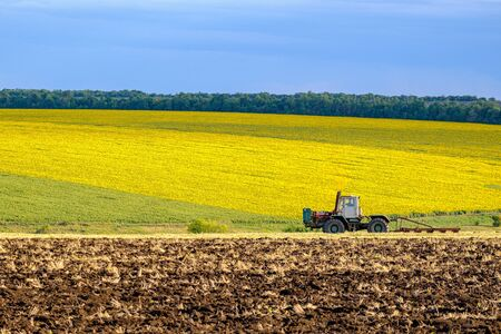 An agricultural tractor in the evening sun plows the field with a plow after harvesting wheat. In the background are fields of bright yellow sunflowers.