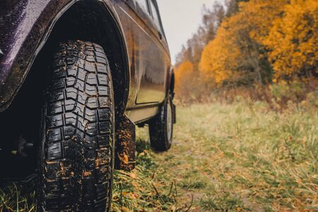 Wheels of an SUV on wet, fading grass at the edge of a forest in the Russian outback on a cloudy autumn day. Adventures to overcome the inaccessible forests.