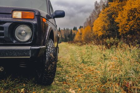 Wheels of an SUV on wet, fading grass at the edge of a forest in the Russian outback on a cloudy autumn day. Adventures to overcome the inaccessible forests. Фото со стока