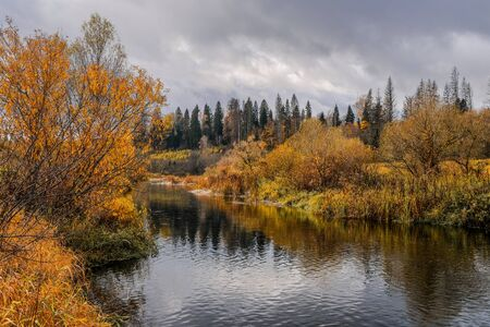 Forest with yellowed leaves on the banks of a small river and a cloudy gray sky on an autumn day in central Russia. Bright colorful landscape.