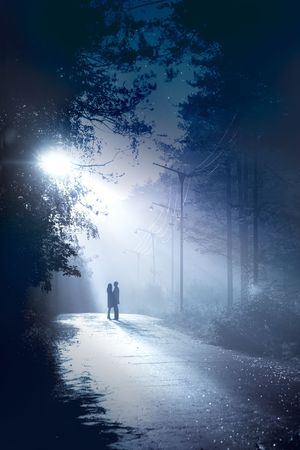 silhouette couple stand together in the moonlight photo