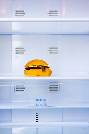 big sandwich in the empty white fridge photo