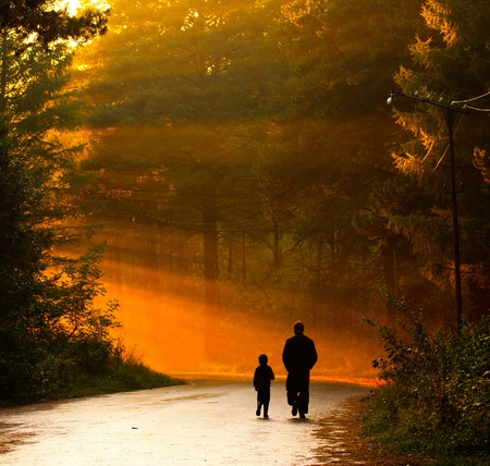 father and son: father and son walking in the sunlight