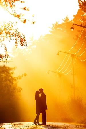 novios besandose: hermoso tiro de besar la pareja en la luz del sol