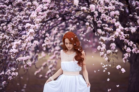 long tail: Beautiful young girl under the flowering pink apple-tree Stock Photo
