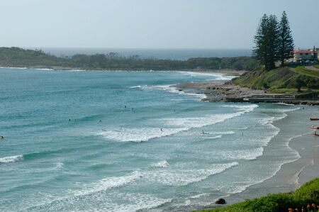 Surfers paddling out to catch waves at an Australian beach. A headland is in the distance. Pine trees stand above a swimming pool cut into the rocks. There is a clear blue sky.