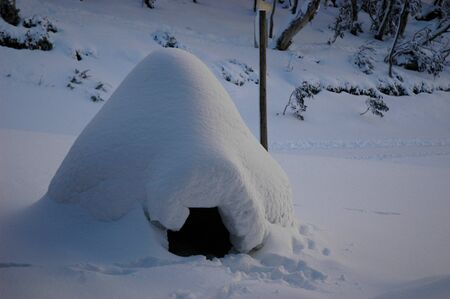 An igloo made on holidays in the snow. The entrance is visible. Snow covered trees and bushes are in the background.