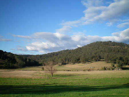 An Australian landscape, with gently rolling hills covered with trees.  Cows with their calves can be seen in the paddock. A deep shadow lies across the foreground. The sky is blue with grey clouds. Stock Photo