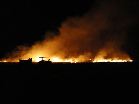 A night-time shot of a burning cane-field. The fire and smoke rise against a black background. A tractor and a dog are silhouetted by the fire. Stock Photo
