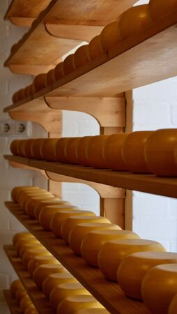 Whole rounds of cheeses stored on shelves. The cheeses are yellow. The wooden shelves are brown, and a white brick wall is in the distance. The rows form a geometrical pattern.