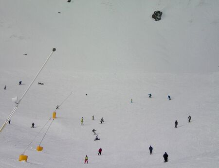 A groups of skiers on a snow-covered slope. The figures are very small. Barrier poles are in the foreground. The slope fills the background, with the top of a tree peeking out from the snow.