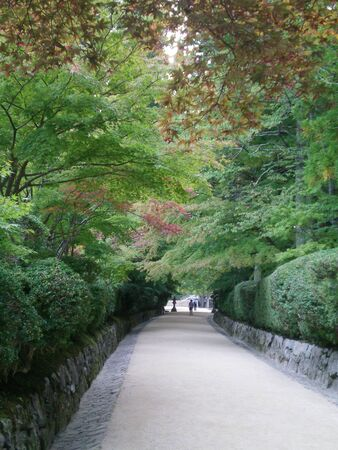 A pathway bordered by stone walls and hedges. Japanese maples with autumn leaves overhang the path. A Japanese lantern stands at the end of the path. Some people are just visible in the distance.