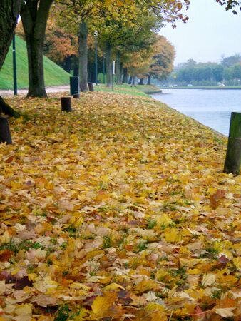 A path by a river covered with fallen autumn leaves in colours of gold, yellow, red and brown. Trees border the path. The sky is overcast. Stock Photo
