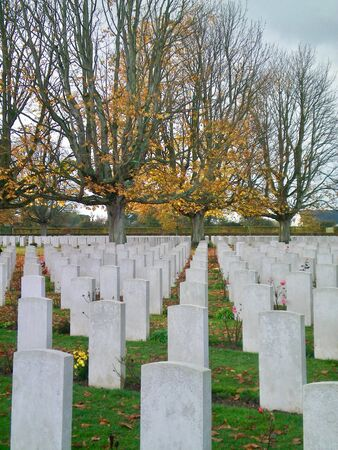 Rows of white tomb stones in a war grave. The headstones are seen from behind; no names are visible. They are surrounded by lawn and some pink roses. Trees are in the background, some with autumn leaves, some bare. the sky is overcast. Stock Photo