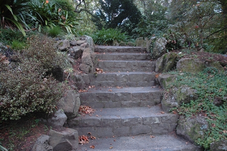 A flight of stone stairs bordered by rocks. They lead through a garden of bushes, trees, ground cover and some flowers. Stock Photo
