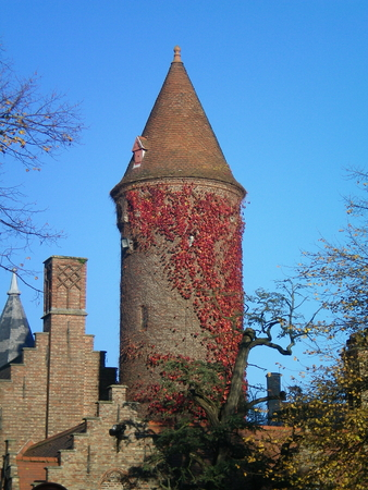 A tower of brick, with a pointed roof and covered with red vines. It stands against a clear blue sky, with some trees in the foreground. Other buildings, with stepped roofline, are nearby.