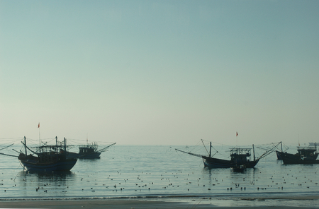 Vietnamese fishing boats moored on tranquil water at a beach. The sand is just visible. The water is calm, stretching to the horizon. The sky is pale blue. The boats are in silhouette against these colours. The water is filled with flotsam.