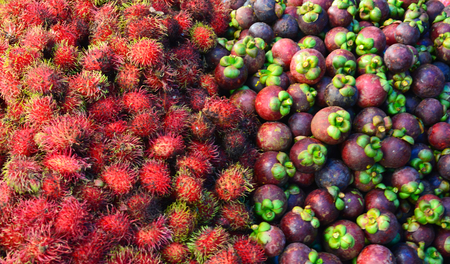 A colourful display of red rambutans and purple mangosteens are piled for sale in a market. The mangosteens still have their green caps and stalks attached. Stock Photo