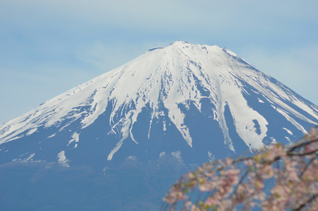 The cone of Mt Fuji rises against a blue sky. The snow on the cap is clearly visible. Pink cherry blossoms frame an edge of the photograph.