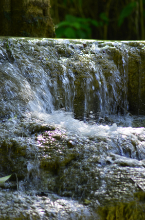 Water is flowing over brown stones. The splashing water is white. Behind the waterfall is the lush growth of a forest.
