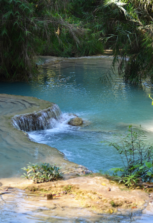 Part of a river has formed a pool of pale blue water. The surrounding forest overhangs the water. In the foregound are some rocks.