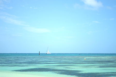 A white catamaran is moored near a reef in the South Pacific. The water varies from pale to dark blue, and the sky is blue with a few clouds.