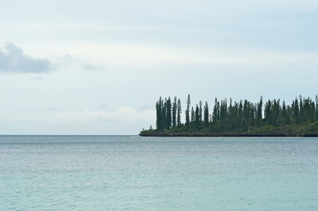Pine trees cover a headland on the Isle of Pines, New Caledonia. The surrounding ocean is grey, and the sky is overcast.