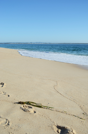 Gentle waves are breaking on a beach. The beach is deserted, but some footprints are on the sand, as well as a strand of seaweed. The sky is clear and blue.