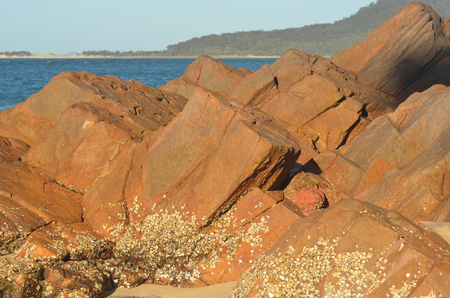 Red rocks are on a beach, their bases covered in small shells. The water is in the background, with a headland in the distance. The sky is clear.
