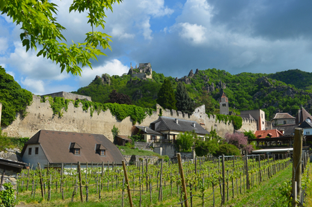 The ruins of Dürnstein Castle in Austria sit on top of a hill, with the walls of the town (including a tower) below. Houses are next to the wall, and a vineyard is in the foreground. The sky is overcast.