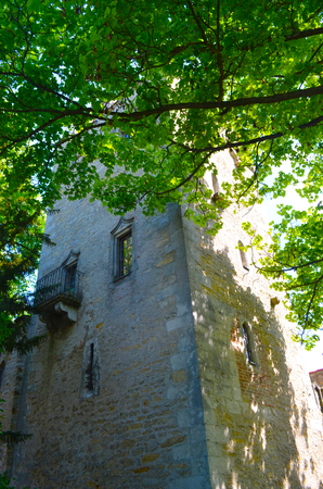 An old tower made of brick is half hidden by trees. One window in the tower has an iron balcony. Stock Photo