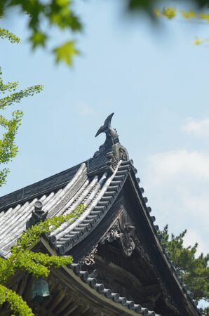 A statue of a fish with its tail in the air rests on the edge of a temple roof in Japan. The roof is covered in traditional tiles. The sky is blue, and trees frame the view.