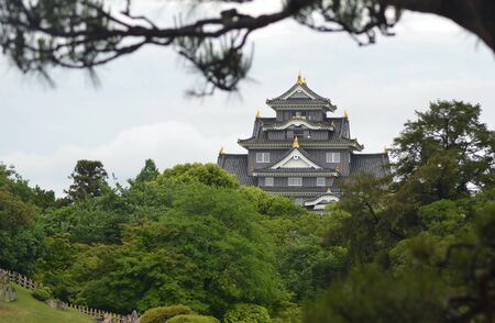 A tree branch frames the view of Masumoto Castle in Japan. The castle is black with gold details. A public park filled with trees is in the foreground.