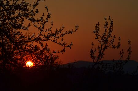 The orb of the setting sun is visible through the dark branches of some trees. Hills are in the distance. The sky is various shades of orange.