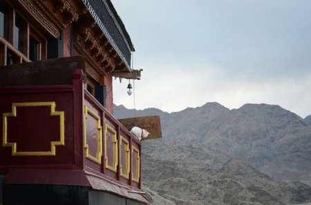 A white cat with a red collar sits on the railing of a Buddhist temple. The temple is red with gold decorations. The barren slopes of the Ladakh mountain range is in the background. The sky is overcast.