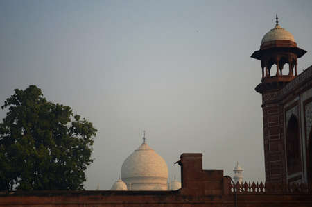 The dome and turrets of the Taj Mahal is seen at dawn from the courtyard of the Red Mosque. A tree is to one side. The colours of dawn are reflected in the colours of the marble.