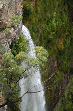 A waterfall in the Blue Mountains, Australia. It is white against the surrounded green eucalyptus trees and scrub. The cliffs are of sandstone. Stock Photo