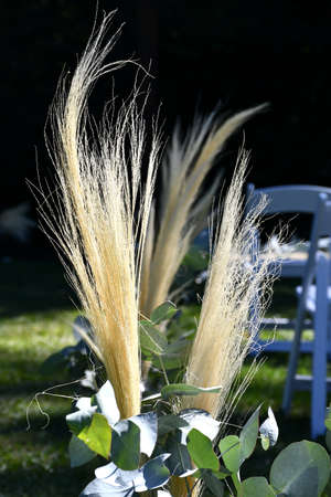 Sunlight falls on a decorative cluster of dried grass and eucalyptus leaves. White chairs are in the background and shadows stretch across the lawn. Stock Photo
