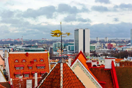 wearhercock on top of the roof in old city photo